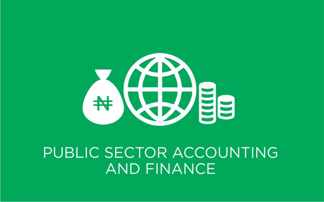 Public Sector Accounting And Finance